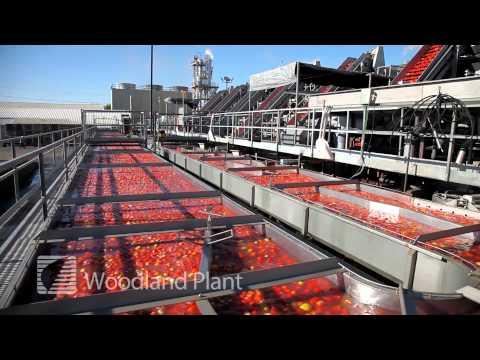California Farming