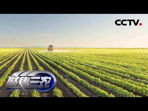 《聚焦三农》 20190511 小农户如何对接大市场| CCTV农业