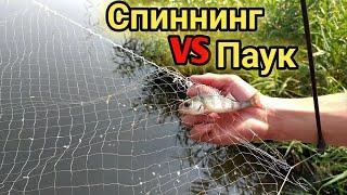 Рыбалка СПИННИНГ vs ПАУК Челлендж кто больше поймает рыбы ПАУК или СПИННИНГ Паук подъёмник