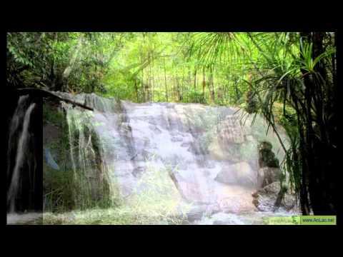 Nhạc Thiền - Thư giãn cùng âm thanh của thiên nhiên.