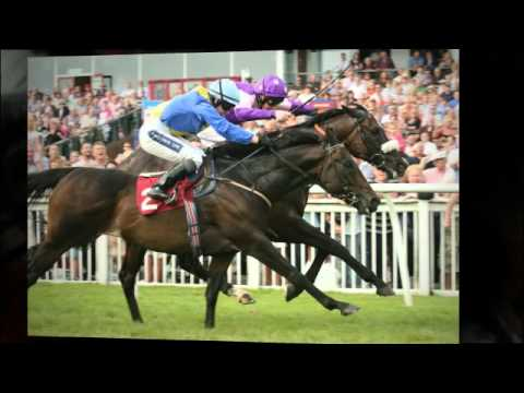Folkestone Racecourse (racecourse kent)
