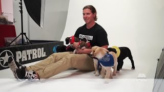 2016 Caps Canine Calendar Photo Shoot(The Washington Capitals take pictures with some of their dogs and some from Homeward Trails Animal Rescue for the 2016 Canine Calendar., 2015-10-14T13:28:50.000Z)