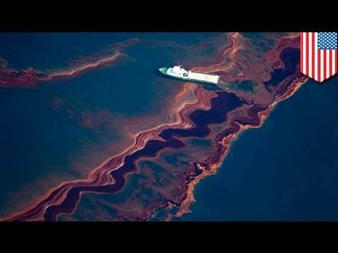 Oil spill closes 65 miles of Mississippi river