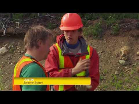 Yukon Gold Staffel