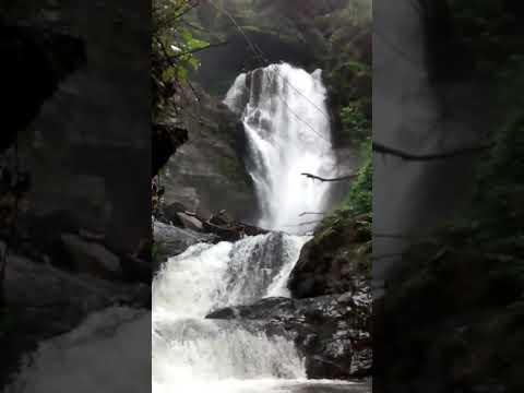Craziest selfie video by Jungli Yatri- (Pavansingh)