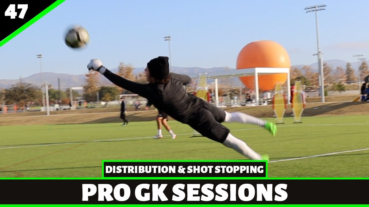 Distribution & Shot Stopping | Goalkeeper Training | Pro Gk Sessions