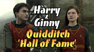 Harry & Ginny | Quidditch 'Hall of Fame'