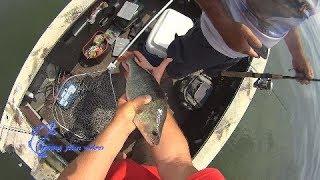 Мега рыбалка на Днепре, судак, окунь до локтя на джиг!