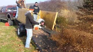 Unloading leaves with a 11 hp blower