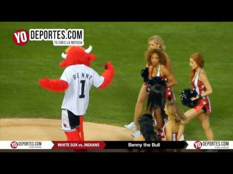 Benny the Bull throw the first pitch White sox vs Cleveland
