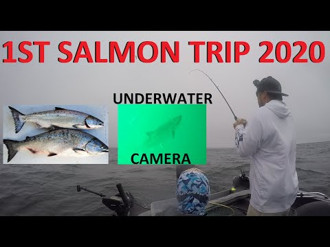 Bodega Bay Fishing | King Salmon Halibut Dungeness Crab