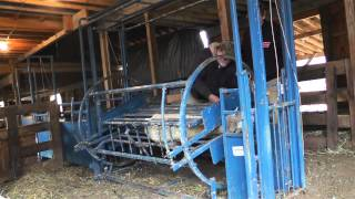 Ohio AgrAbility - Handling Sheep with a Spin Doctor