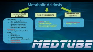 Metabolic Acidosis Made Easy