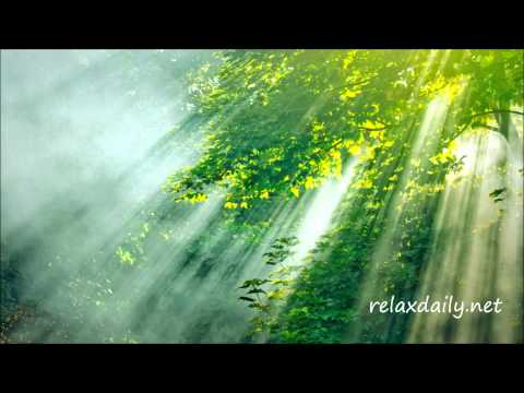 Relaxing Piano Music - work, study, meditation - relaxdaily N°045
