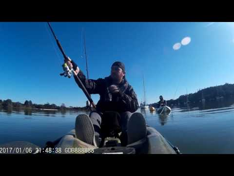 Mad Yakkerz Kayak Fishing NZ - Waitemata Harbour Fishing - Hobsonville