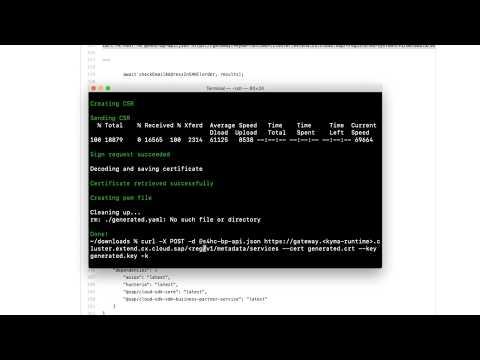 extending-cc:-pair-sap-s/4hana-cloud