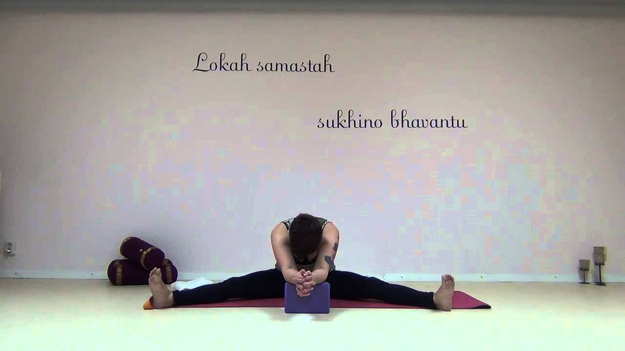 Yin yoga Framåtböjar