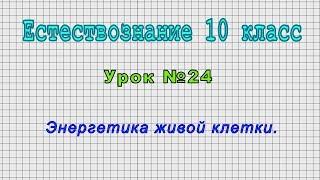 Естествознание 10 класс (Урок№24 - Энергетика живой клетки.)
