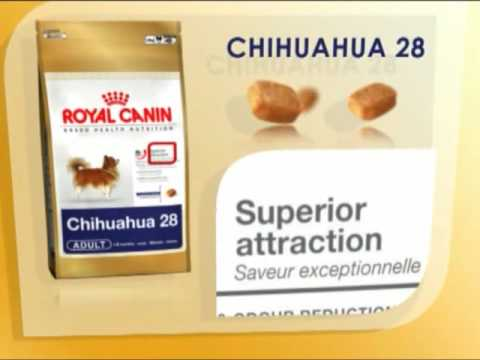 royal canin chihuahua nutrition youtube. Black Bedroom Furniture Sets. Home Design Ideas