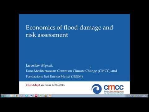 Webinar: Economics of flood damage and risk assessment