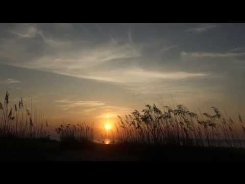HD Background Video Art -- Beach Sunrise through the grass at Palmetto Dunes, Hilton Head SC