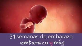 31 semanas de embarazo - Séptimo mes - EMBARAZOYMAS