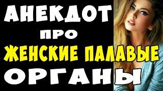 АНЕКДОТ про Женские Палавые Органы и Винтовку Мосина Самые Смешные Свежие Анекдоты