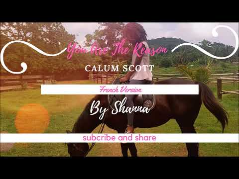 Calum Scott- You Are The Reason  ( French Version ) By Shanna