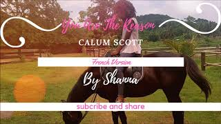 Download Lagu Calum Scott- You Are The Reason  ( French Version ) By Shanna Mp3