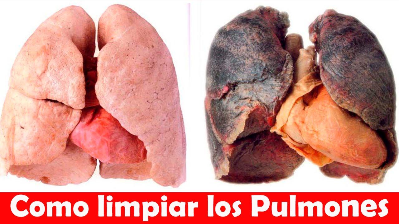 Como limpiar los pulmones de un fumador como for Se puede fumar en las piscinas