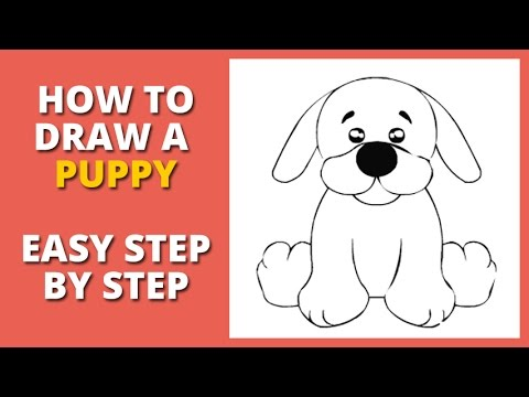 How To Draw A Puppy Easy Step By Step For Beginners
