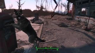 Подозрительная Псина - Fallout 4