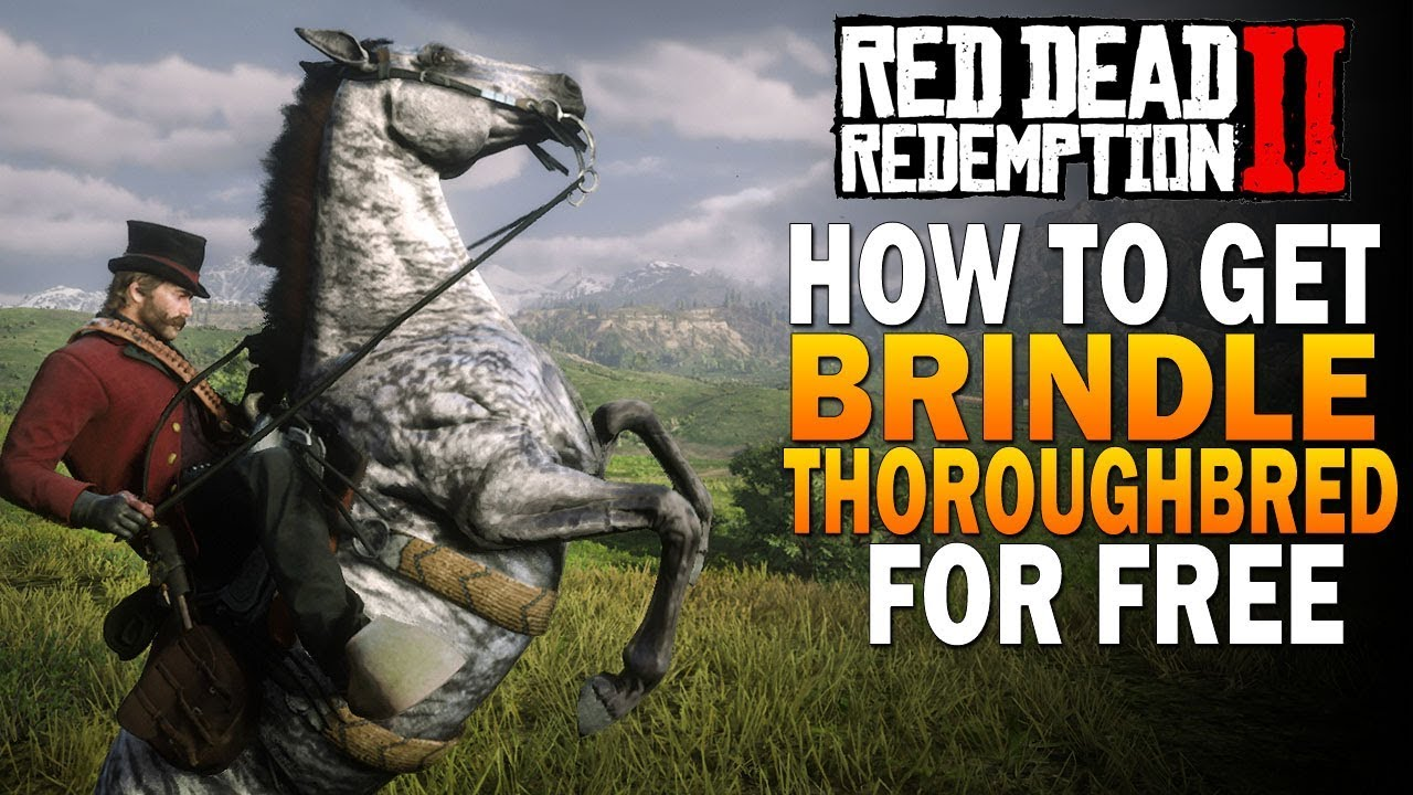 How To Get Rare Brindle Thoroughbred Free Fastest Horse Red Dead