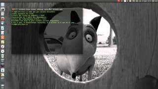 Nettoyage de Linux Ubuntu 15.04 avec Bleachbit