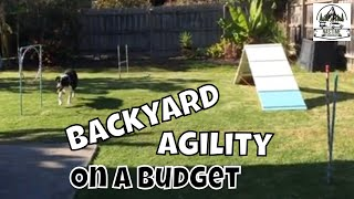 Diy Dog Agility Course Set Up For Border Collie 1st Birthday Party