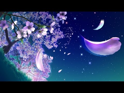 Beautiful chinese music night flowers youtube - Flowers that bloom only at night ...