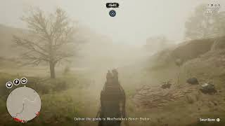 Red dead 2 EASY MONEY ANd rp camp sell glitch