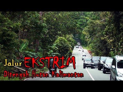MENEMBUS HUTAN KALIMANTAN | Trip Perdana Balikpapan - Samarinda with PO Gelora
