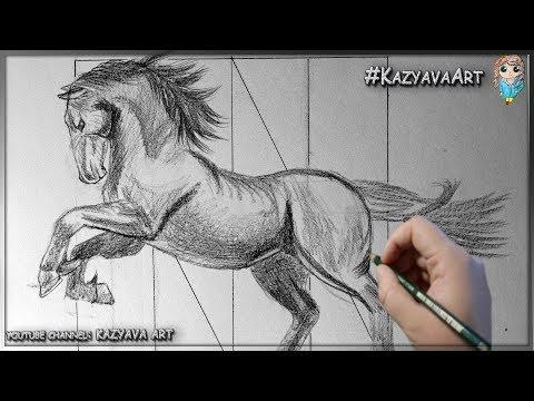 Как нарисовать лошадь (коня) в полный рост карандашом шаг за шагом