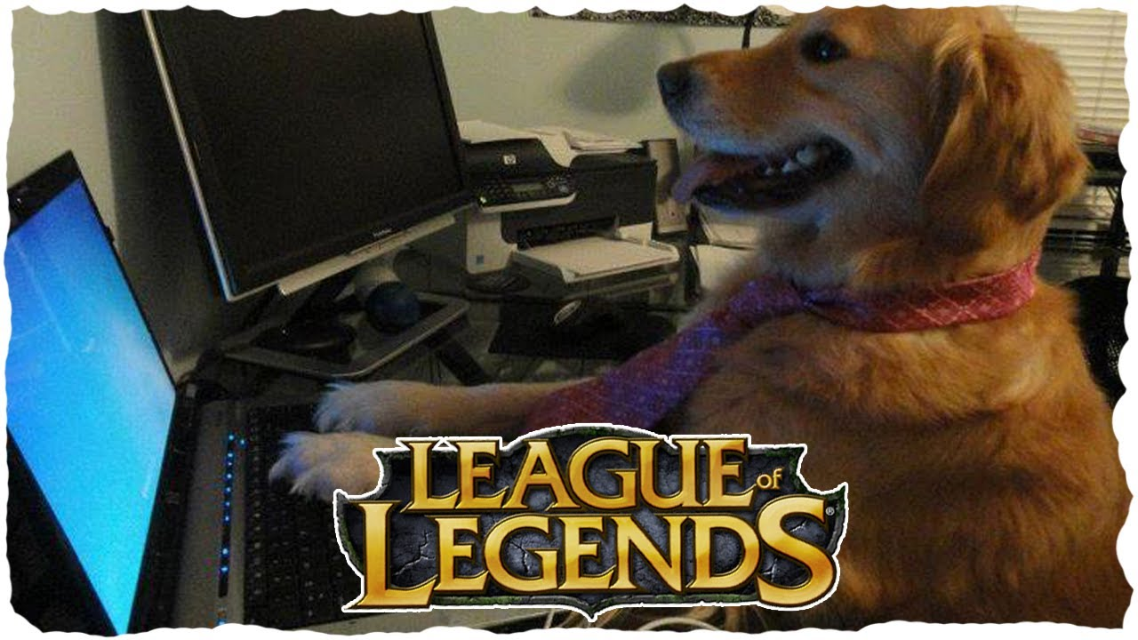 Rozaliul joaca League of LoL