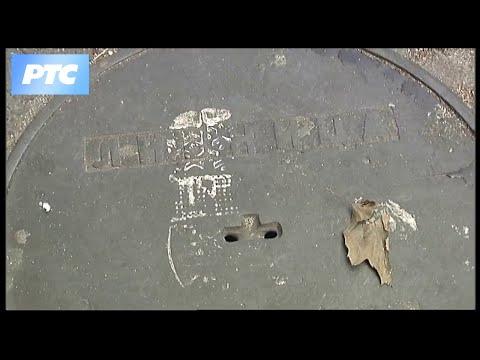 Zvona Save Lozanića