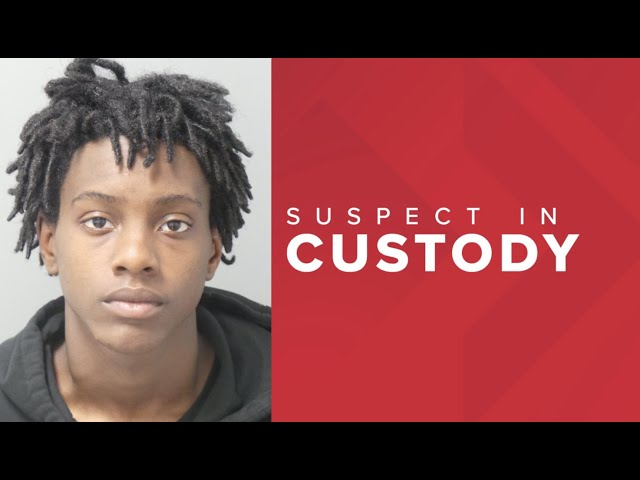 Suspect 17 year old is in custody, charged in fatal shooting of Lyft Driver. Will Uber and Lyft act?