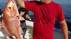 Red Snapper Fishing Charter - Jacksonville, FL