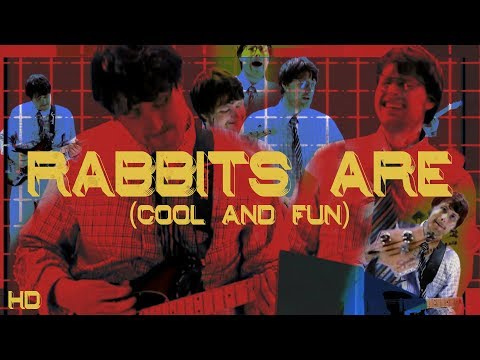 Rabbits Are (Cool and Fun)