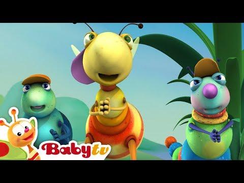 Big Bugs Band - Hip Hop It's a Rap | BabyTV