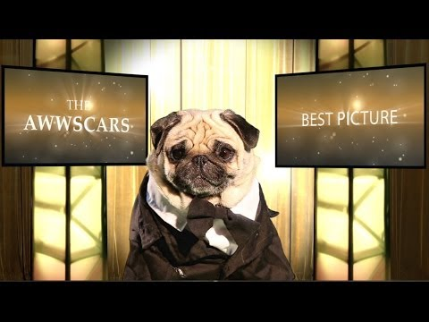 What The Best Picture Oscar Nominees Would Look Like If They Had Pugs In Them