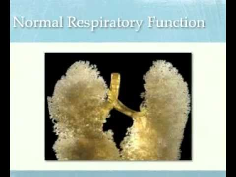 CPAP Training Video part 1
