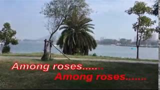 Smells of roses-Sofia Kallgren (把悲傷留給自己-陳昇)--KARAOKE及KTV 伴唱字幕影音