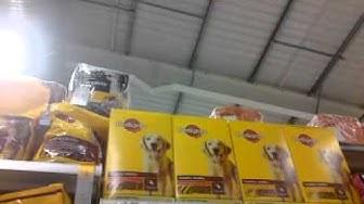 Buying dog food from Tesco nice jazz stuff