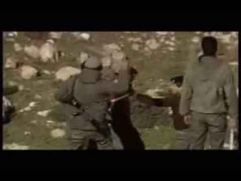 Palestine + Ireland = ONE STRUGGLE
